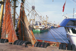 Great Britain, England, Suffolk, Lowestoft, fishing trawlers at quays