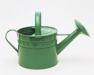 Green metal watering can, side view