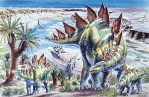 drawings/dinosaurs/illustration representing group stegosaurus jurassic