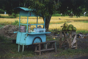 Indonesia, East Bali, near Candi Dasa, road-side food stall selling water and fruit.