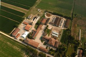Italy, Lombardy Region, Mantova, Aerial view of commercial farm Corte Facchina Piccola at Nosedole