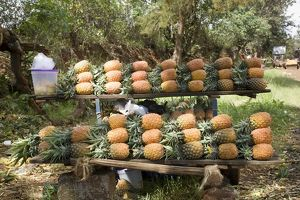 Kenya, near Thika, pineapples for sale on roadside