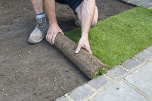 Man laying turf by rolling out grass
