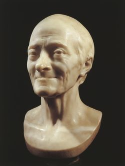 Marble head of Voltaire by Jean Antoine Houdon