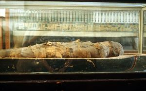 Mummy wrapped in bandages and lying on base of coffin. Cairo Museum. Egypt