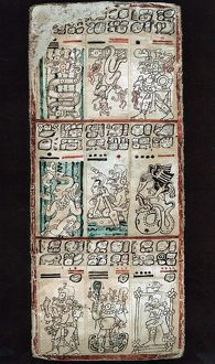 Page from Dresden Maya manuscript