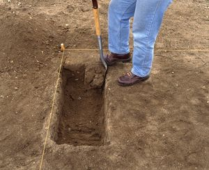 Person digging with spade in area marked-out with string