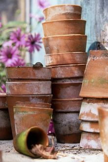 Plant pots piled high one inside another, with a garden snail peering over the top