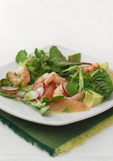 Plate of prawn, lettuce and avocado salad on white background