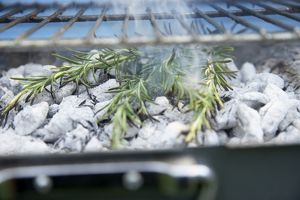 Rosemary stems on charcoals of a barbecue grill