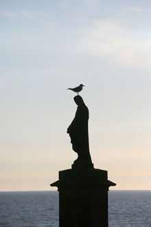 Sea gull on a statue of the Virgin Mary