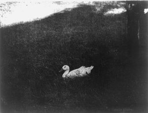 The simple life by Gertrude Kasebier, 1852-1934, photographer photomechanical print