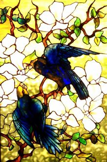 Stained Glass - Hibiscus and Parrots 1920 A.D.