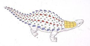Technical drawing of Dracopelta dinosaur, elevated view