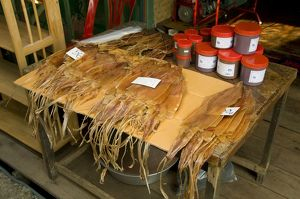 Thailand, Ko Chang, Bang Bao, dried squid for sale at fishing village