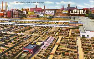 Union Stock Yards. ca. 1941, Chicago, Illinois, USA, The Union Stock Yards are located