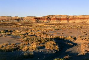 USA, Arizona, Petrified Forest National Park, Blue Mesa in Painted Desert