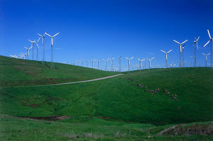 USA, California, Wind farm with Windmills producing natural energy at Livermore's