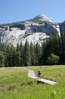 USA, California, Yosemite Valley, woman cycling on boardwalk through lush countryside