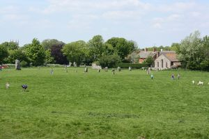 View of Avebury Stones 2013 A.D