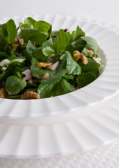Watercress and walnut salad, close-up