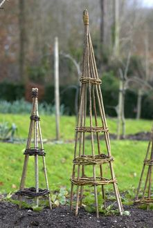 Willow wigwams