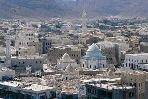 world heritage/building exterior/yemen hadramawt province saywun cityscape elevated
