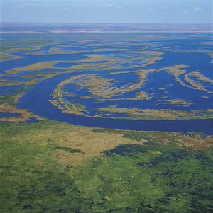 Zambia, Aerial view of Kafue River marshes