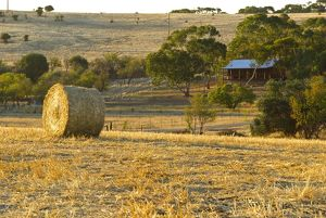 Australian country-side