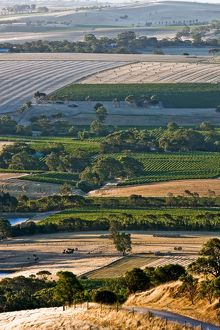 Barossa Valley, (Selection of 45 Items)