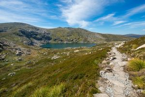 Blue lake track in kosciuszko national park