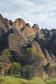 Bungle Bungles, beehive-shaped sandstone towers, Purnululu National Park, UNESCO