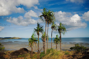 Cape York Peninsula QLD