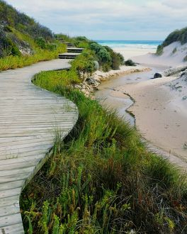 Conspicuous Bay Beach Path