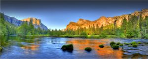 <b>Yosemite National Park</b><br>Selection of 492 items