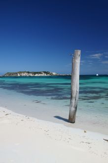 Hamelin bay revisited