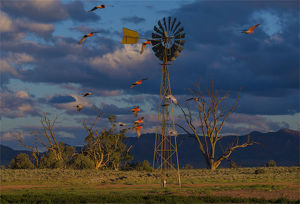 Late afternoon light at a remote agricultural windmill in outback South Australia.