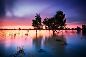 Menindee Lakes after Sunset, Australian Outback