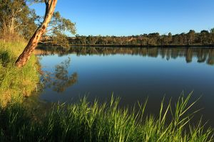 Murray River. Waikerie. South Australia