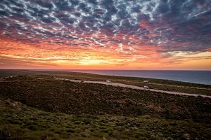 Ningaloo Coast (Selection of 14 Items)
