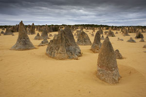 Pinnacles at Nambung National Park