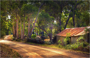 A rural gravel road on south Bruny Island, Southern Tasmania.
