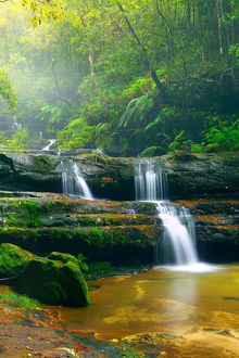 Terrace Falls, Blue mountains