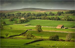 A tranquil view of farmland in the Yorkshire dales, England, United Kingdom.