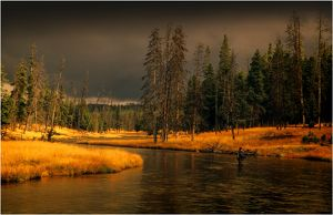Yellowstone National Park, Wyoming, United States.