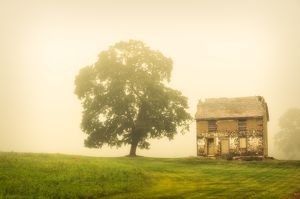 Abandoned House: Rural foggy landscape photograph of a rundown house in a meadow