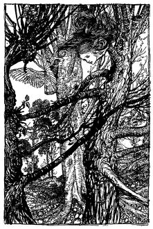 Alice looking out of tree illustration, (Alice's Adventures in Wonderland)