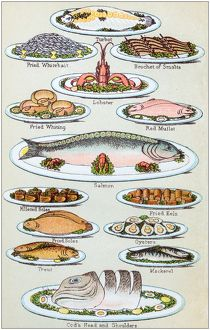 Antique recipes book engraving illustration: Seafood
