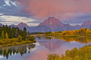 Autumn forests and Mount Moran at sunrise, reflecting in Oxbow Bend of Snake River