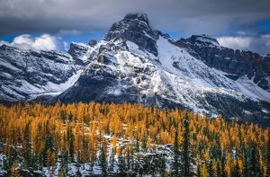 travel/unesco world heritage/autumn scenery rocky mountains lake ohara yoho